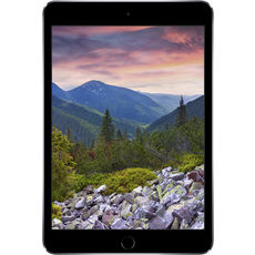 Apple iPad Mini_3 64Gb Wi-Fi Space Grey