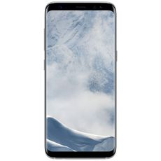 Samsung Galaxy S8 SM-G950F/DS 64Gb Silver (РСТ)
