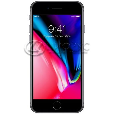 Apple iPhone 8 256Gb LTE Grey - Цифрус