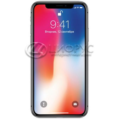 Apple iPhone X 64Gb LTE Grey - Цифрус