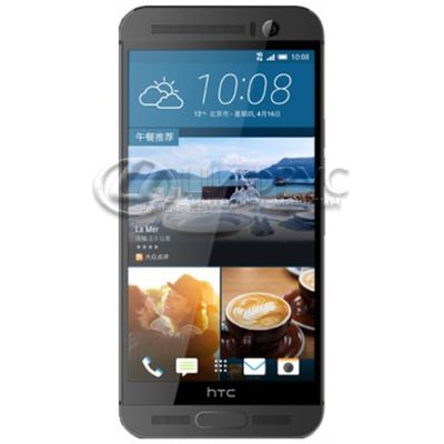 HTC One M9 Plus 32Gb LTE Gray - Цифрус