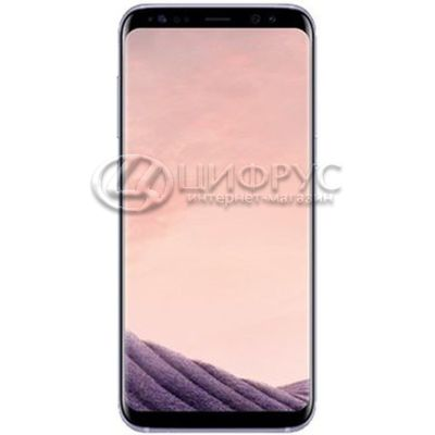 Samsung Galaxy S8 G950F/DS 64Gb Dual LTE Grey - Цифрус
